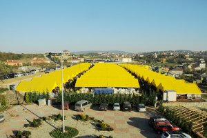 Beykoz'da Kurbankent göz kamaştırıyor