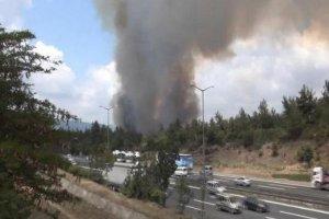 İkinci orman yangını şüphe yarattı