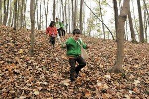 Orman Kaşifleri görev başında!