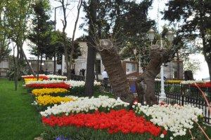 Beykoz'da bahar, Yuşa'da güzel