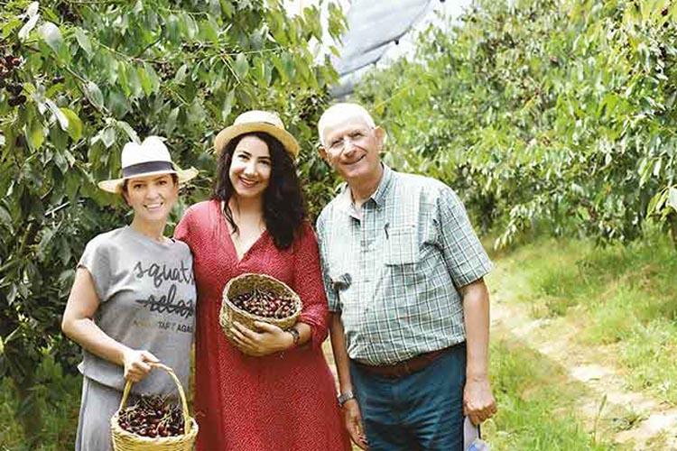 Beykoz'da internetten meyve satılan bahçe