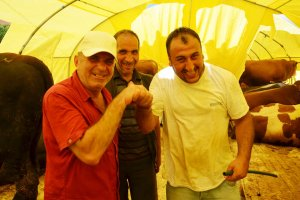 Beykoz'da kurbanlık hareketliliği sürüyor