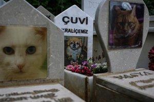 Beykoz'da hayvan mezarlığına ziyaretçi akını