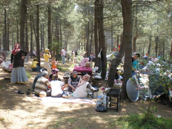 Piknik alanları şenlendi.