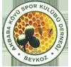 Akbaba Köyü  Spor Kulübü