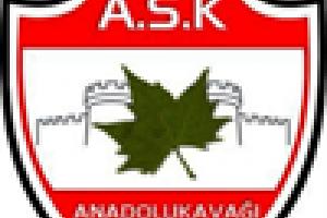 Anadolukavağı Spor Kulübü