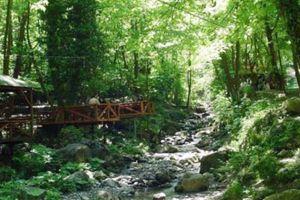 Doğa harikası Polonezköy Tabiat parkı