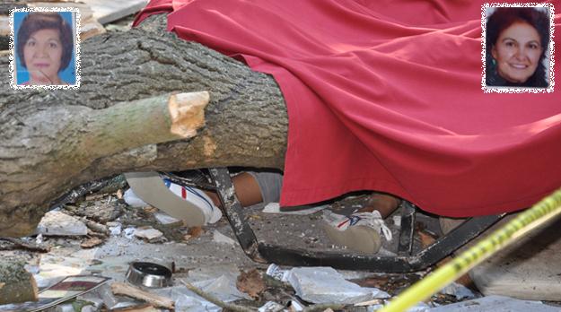 Beykoz Korusu'nda ağaç faciası...İki ölü bir yaralı