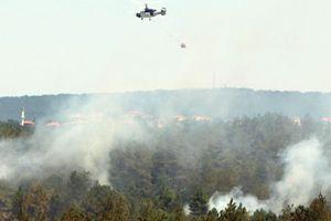 Bakandan Beykoz yangınları açıklaması