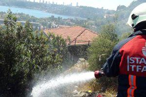 Beykoz'da fundalık alanda yangın çıktı
