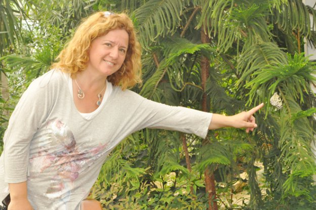 Beykoz'un Yeni Rengi: Kelebek Çiftliği
