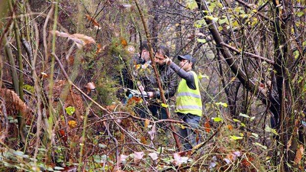 Beykoz'da ormanlık alanda parçalanmış ceset bulundu