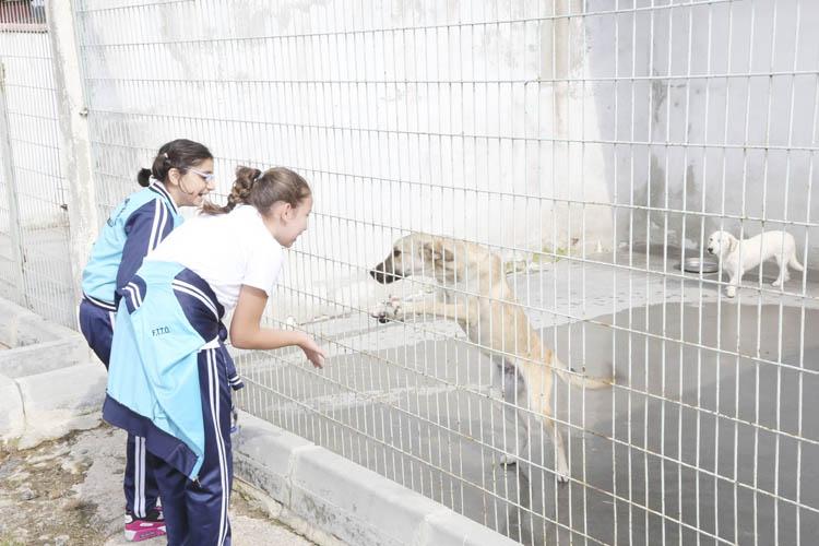 Beykoz'da çocuklara hayvan sevgisi aşılanıyor