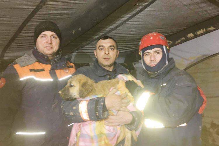 Beykoz'daki sondaj kuyusunda mutlu son