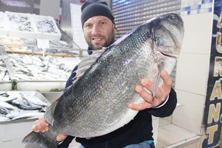 Beykoz'da 1 kilo 200 gram balık tezgahtan çalındı