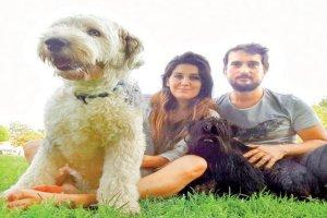 Beykoz Çavuşbaşı'nda köpek otelini biliyor musunuz?
