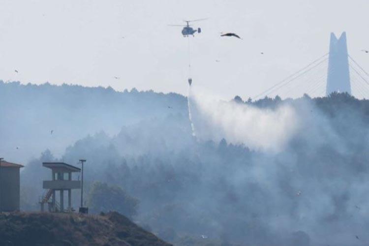 Beykoz Anadolufeneri'nde orman yangını