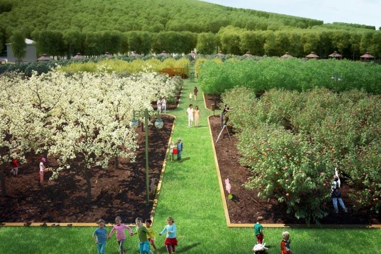 Sebze ve meyve pahalılığına Beykoz çözümü