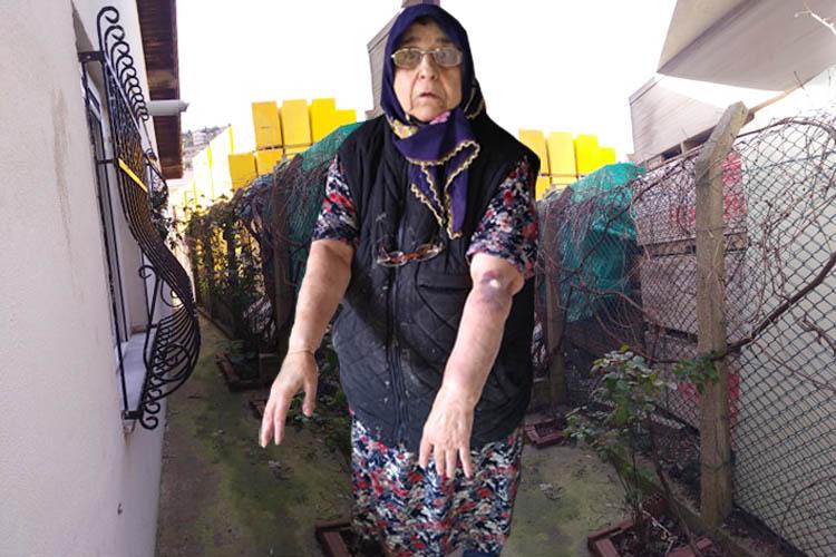 Beykoz Göksu'daki evinde 35 yıldır hapis gibi yaşıyor