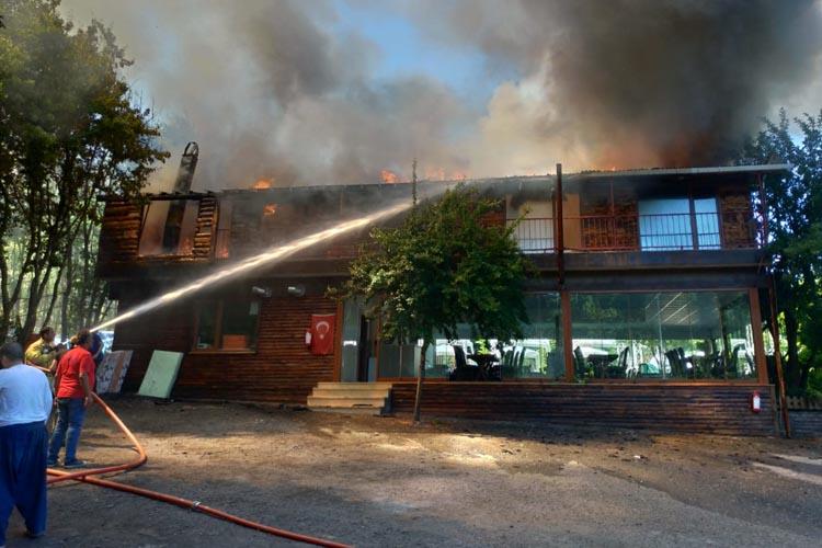 Beykoz'da Mesire alanında yangın çıktı