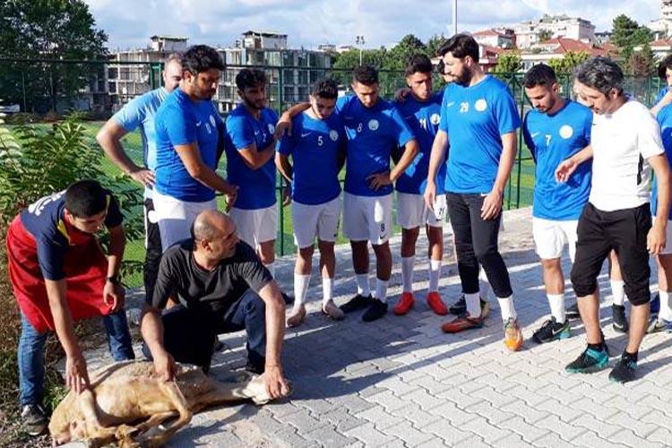 Kavacıkspor yeni sezon için ilk idmanını yaptı