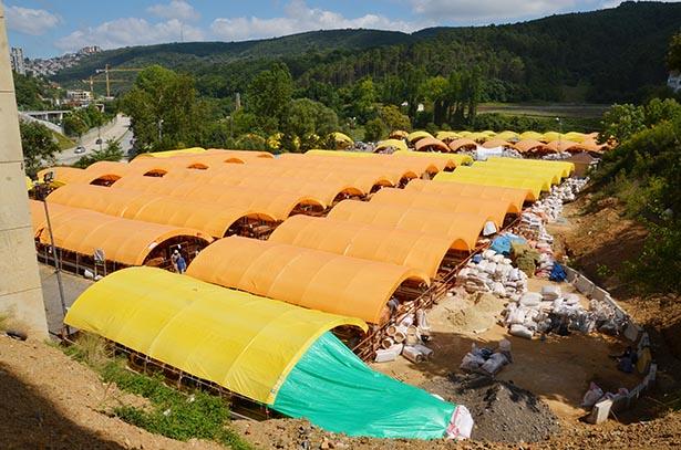 Beykoz Kurbankent'te 24'er tane hayvanın bulunduğu 76 çadır kuruldu