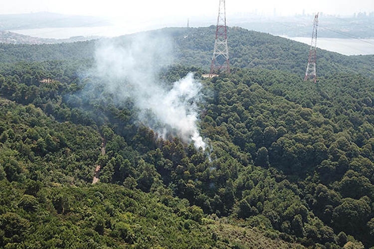 Beykoz'daki orman yangınlarının perde arkası