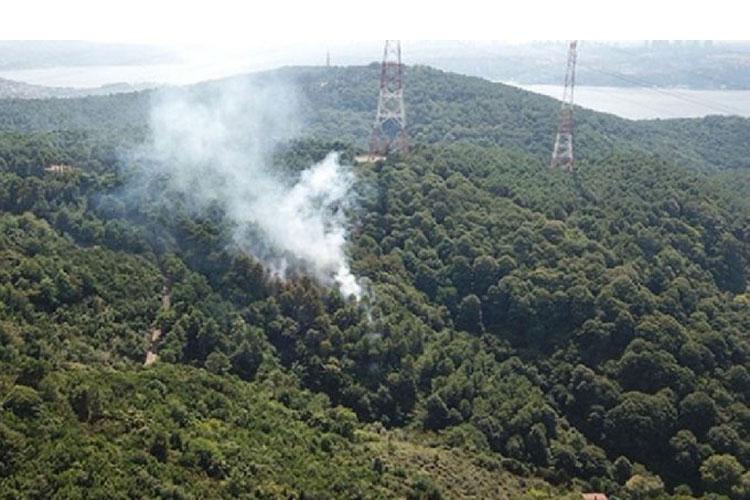 Beykoz Anadolukavağı'nda 3 noktada yangın