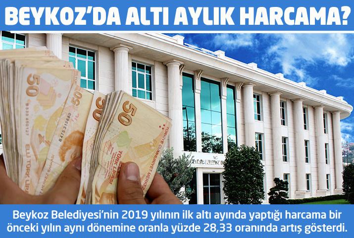 Beykoz'da ilk altı aylık harcama 206 milyon TL