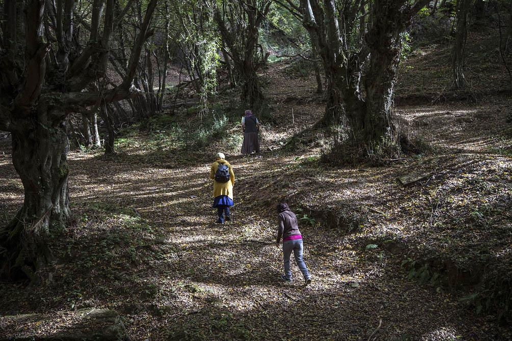Beykoz'da sonbahar büyülüyor