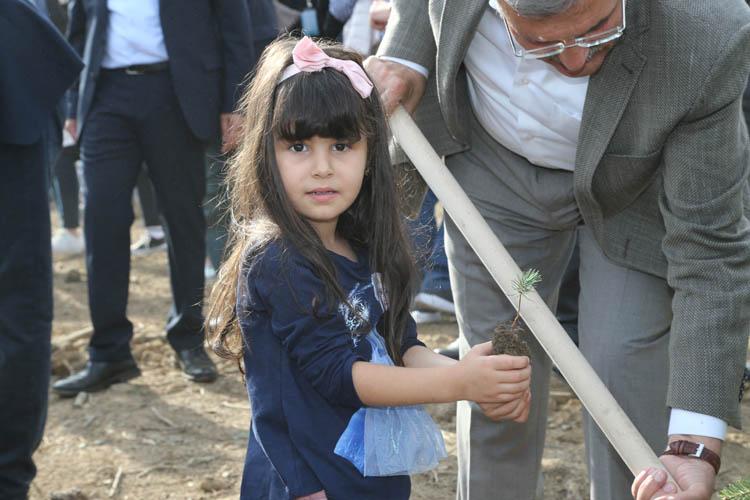 11.11'de Beykoz'a 7 bin 500 fidan