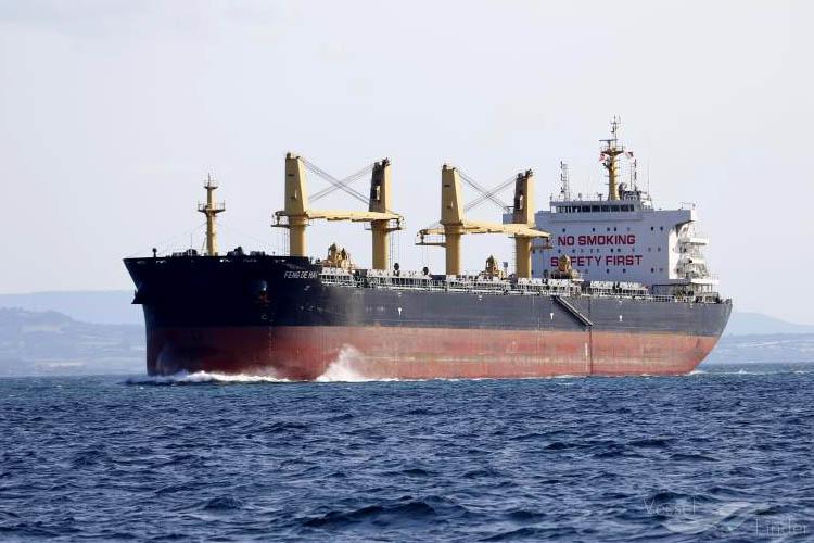 Beykoz'a demir atan geminin kaptanı virüsten mi öldü?