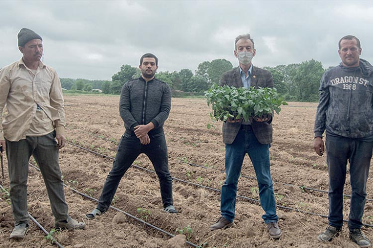 Beykoz'da toprak çiftçiyi güldürüyor