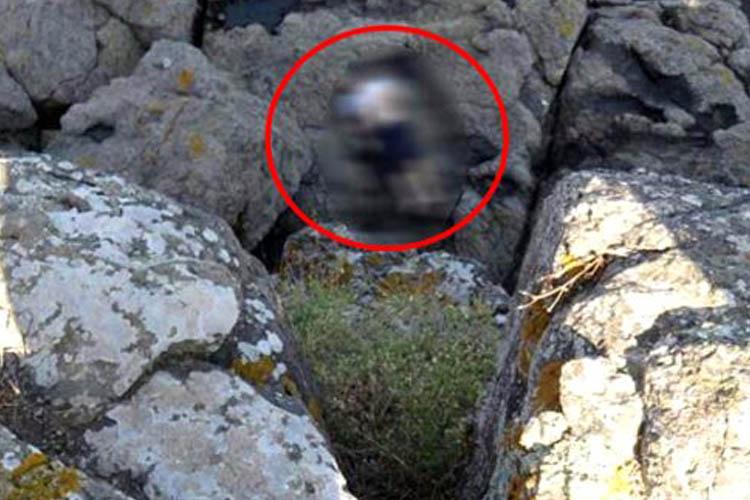 Beykoz Riva'ya kampa gelen genç ölü bulundu