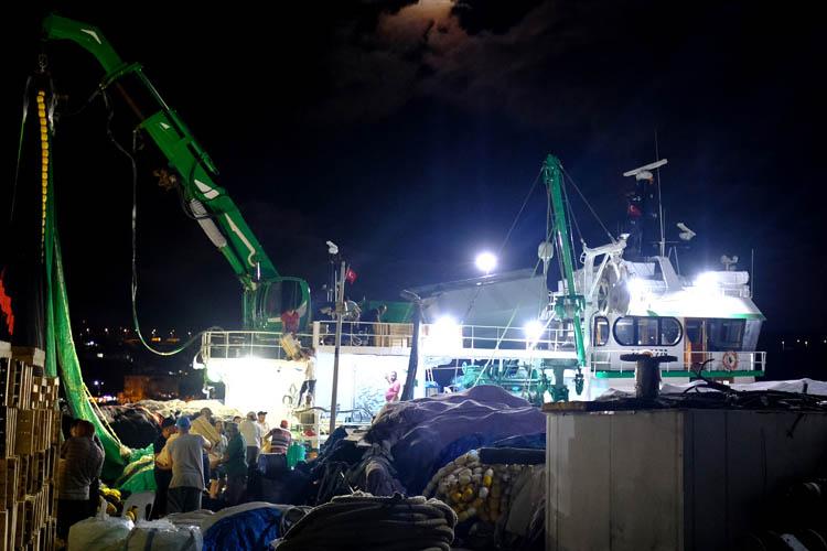 Beykozlu balıkçılar sirenlerle av sezonunu açtı