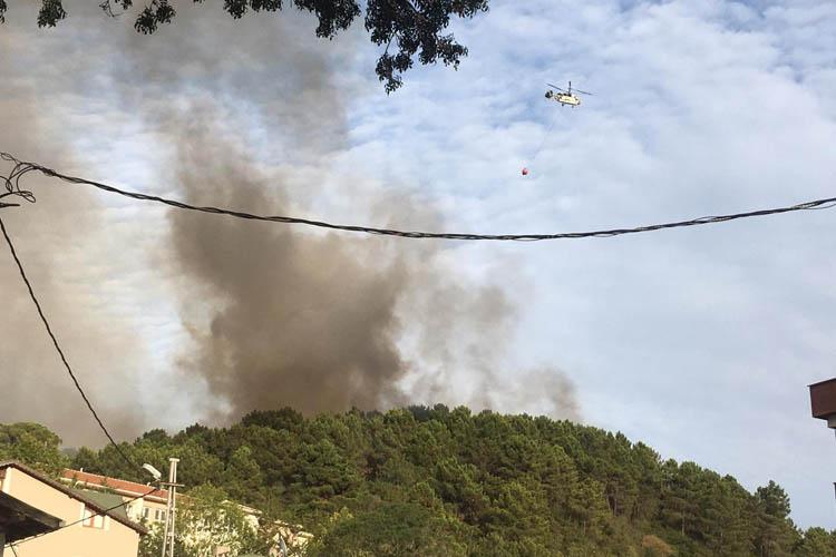 Beykoz Göztepe'de orman yangını, helikopter istendi