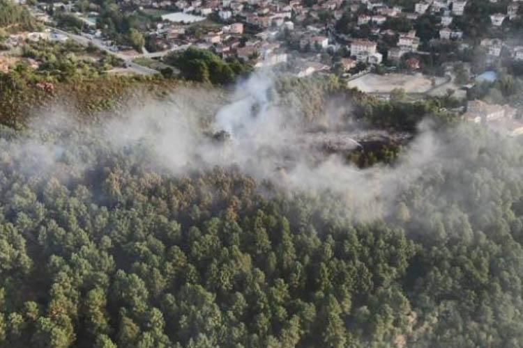 Beykoz'da 2 günde ikinci orman yangını