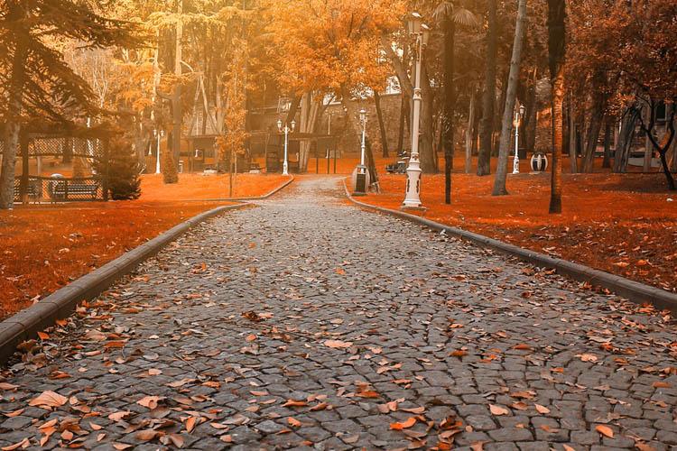 Beykoz'da sonbahar fotoğrafı için en iyi mekanlar