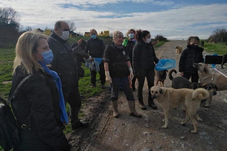 İYİ Parti'den Beykoz'daki sokak hayvanlarına kış desteği