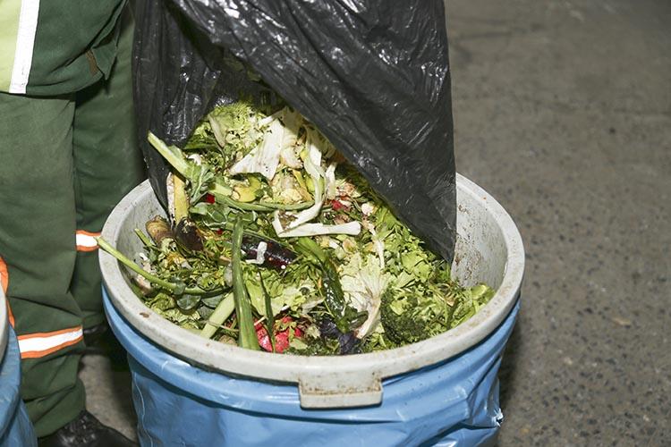 Pazar atıkları Beykoz'da tarımla sofralara dönüyor