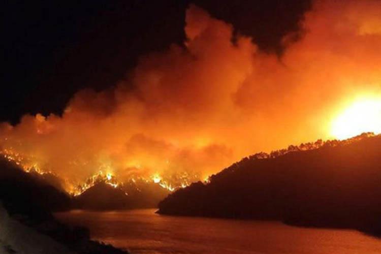 Beykoz Belediyesi, Manavgat yangını için yola düştü